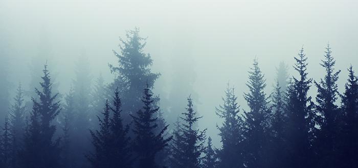 ¿Qué significa soñar con Niebla? Significado e interpretaciones