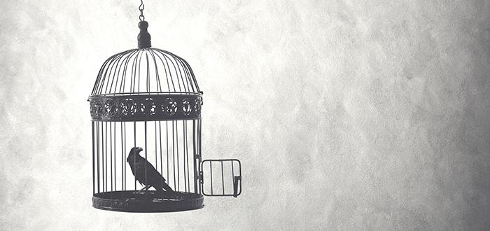 Cómo evitar soñar con una jaula