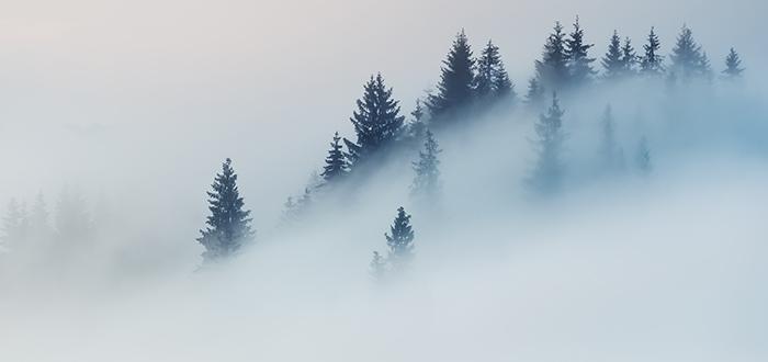 Ejemplo de sueño con niebla | Narrado