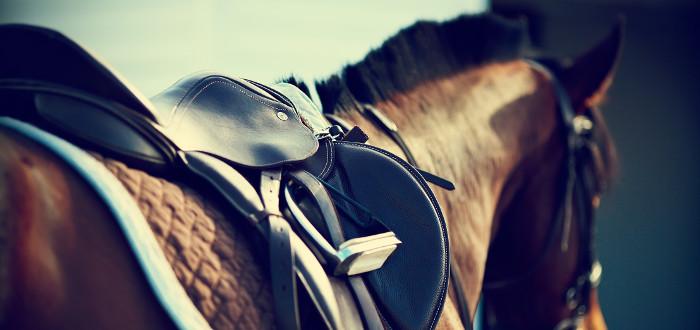 Soñar con caballos silla